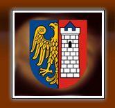 wróżka tarot Gliwice